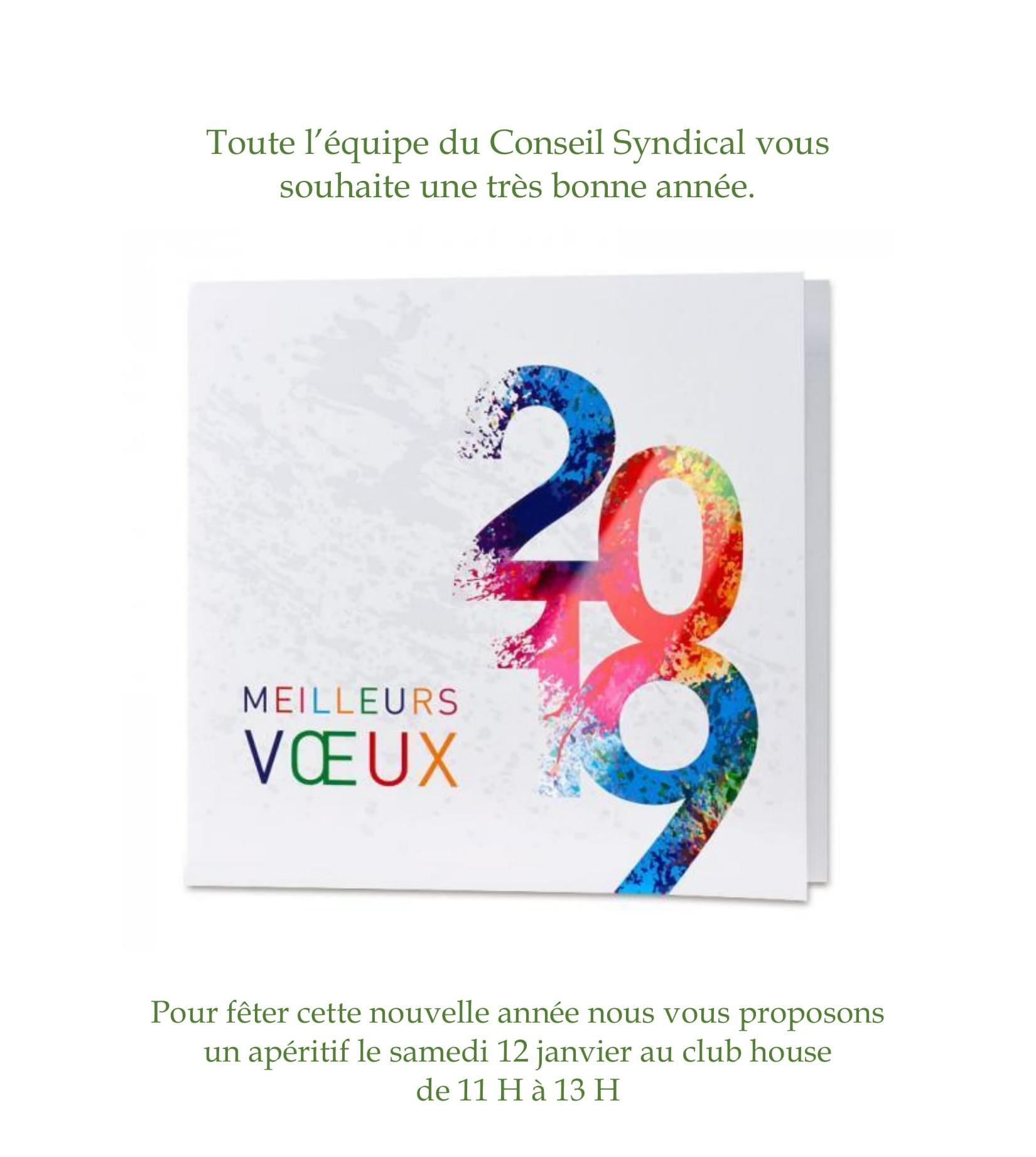 carte voeux 2019B